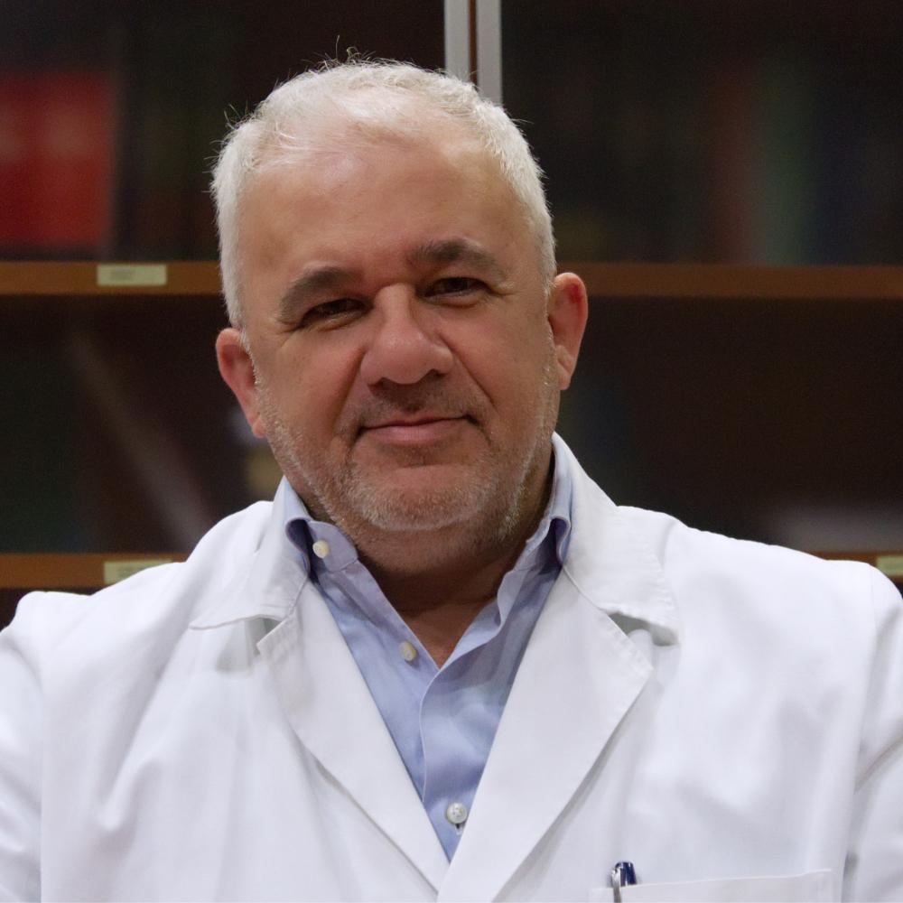 Prof. Luigi Schips